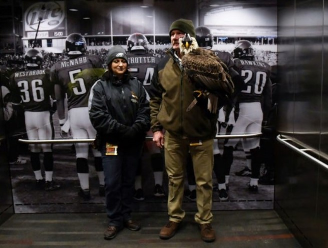 Bald Eagle That Soared Over Lincoln Financial Field a Busy Bird
