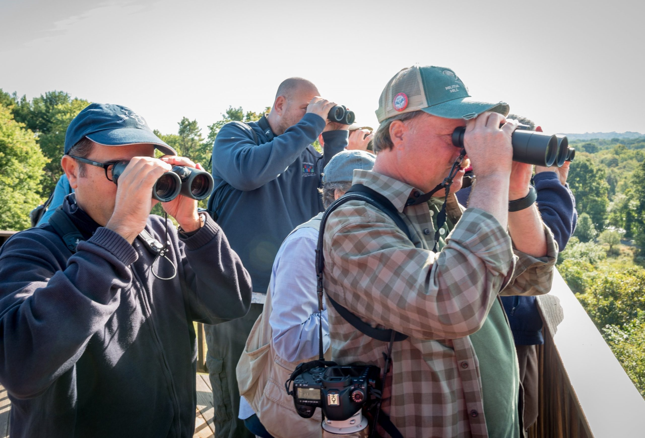 America's Favorite Pastime to Be Showcased at the American Birding Expo