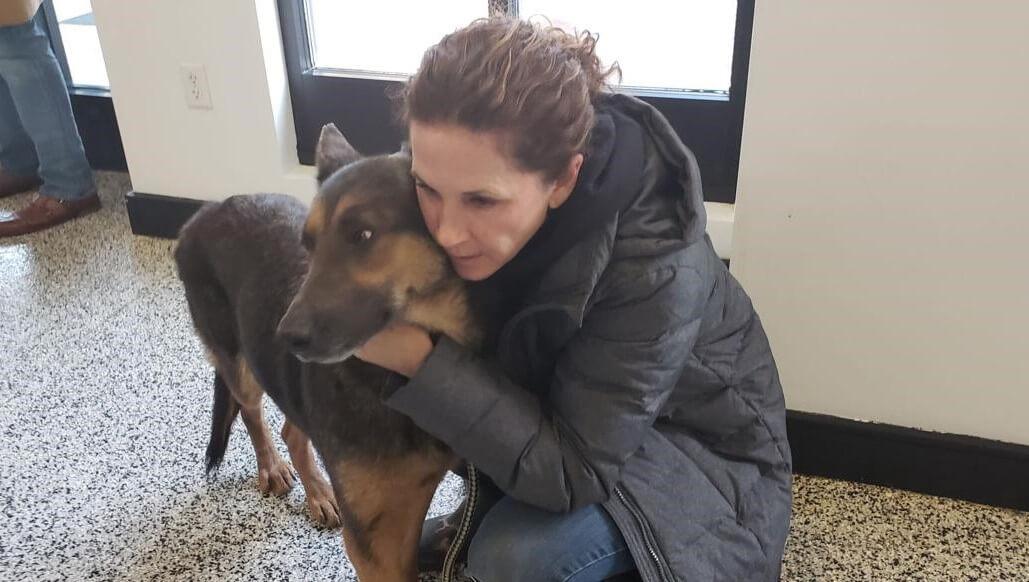 German Shepherds 'Living in Severe Neglect' in Georgia Rescued by Brandywine Valley SPCA