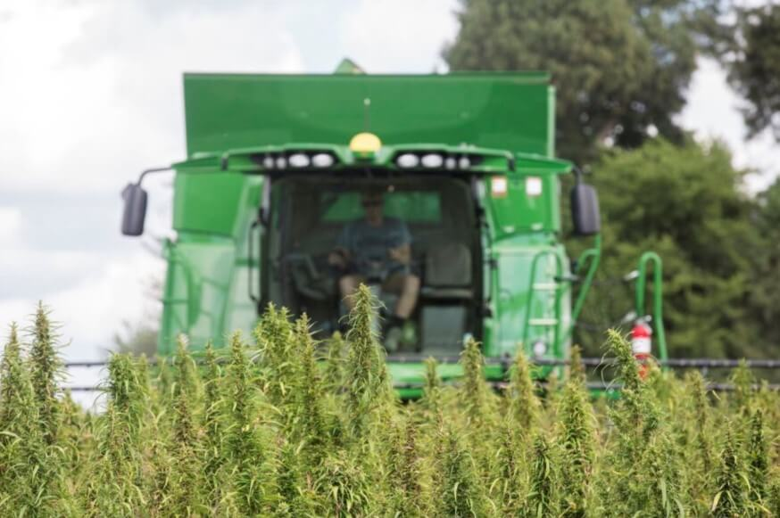 Pennsylvania Rolls Out Welcome Wagon for Industrial Hemp Production