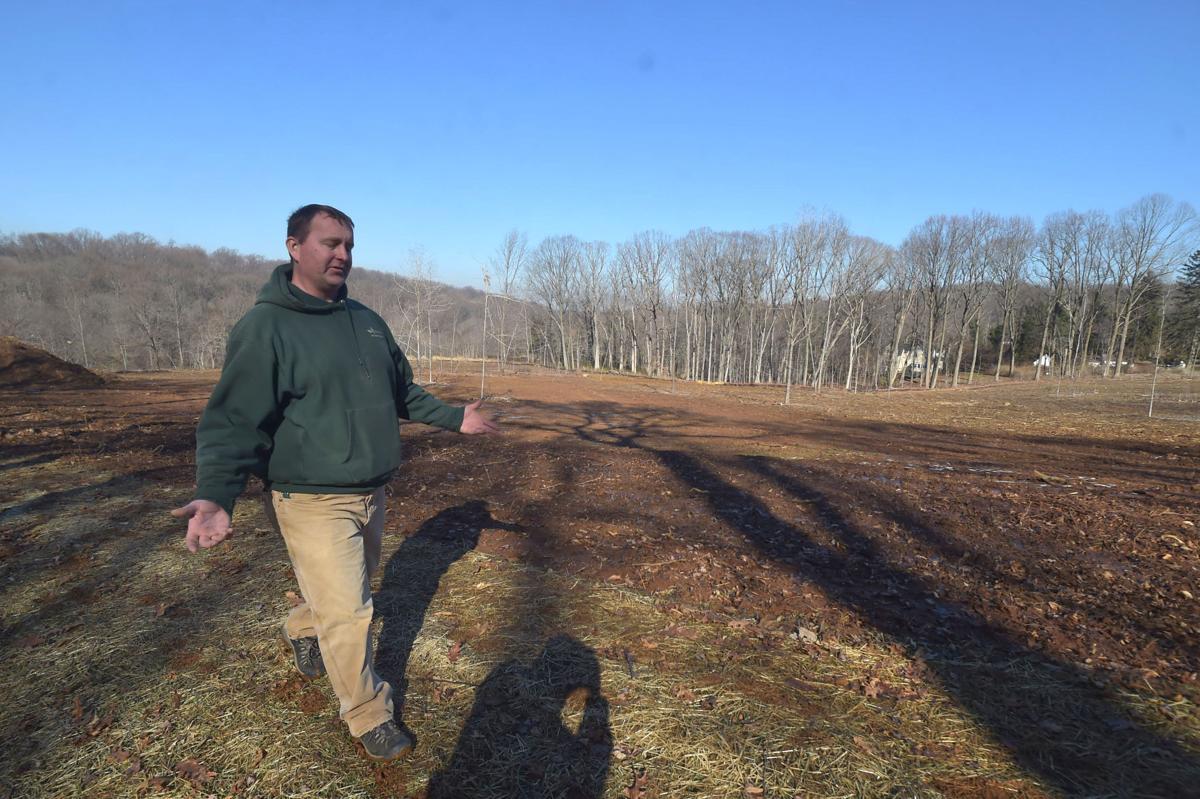 Tyler Arboretum Clears Trees in Effort to Refurbish Rare Environment