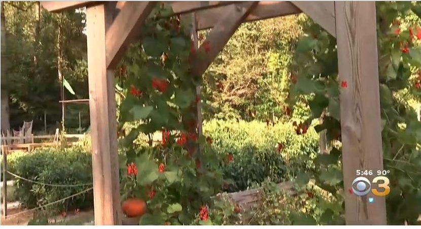 Tyler Arboretum Has Always Been Beautiful to Look at. Now It's Tasty, Too.