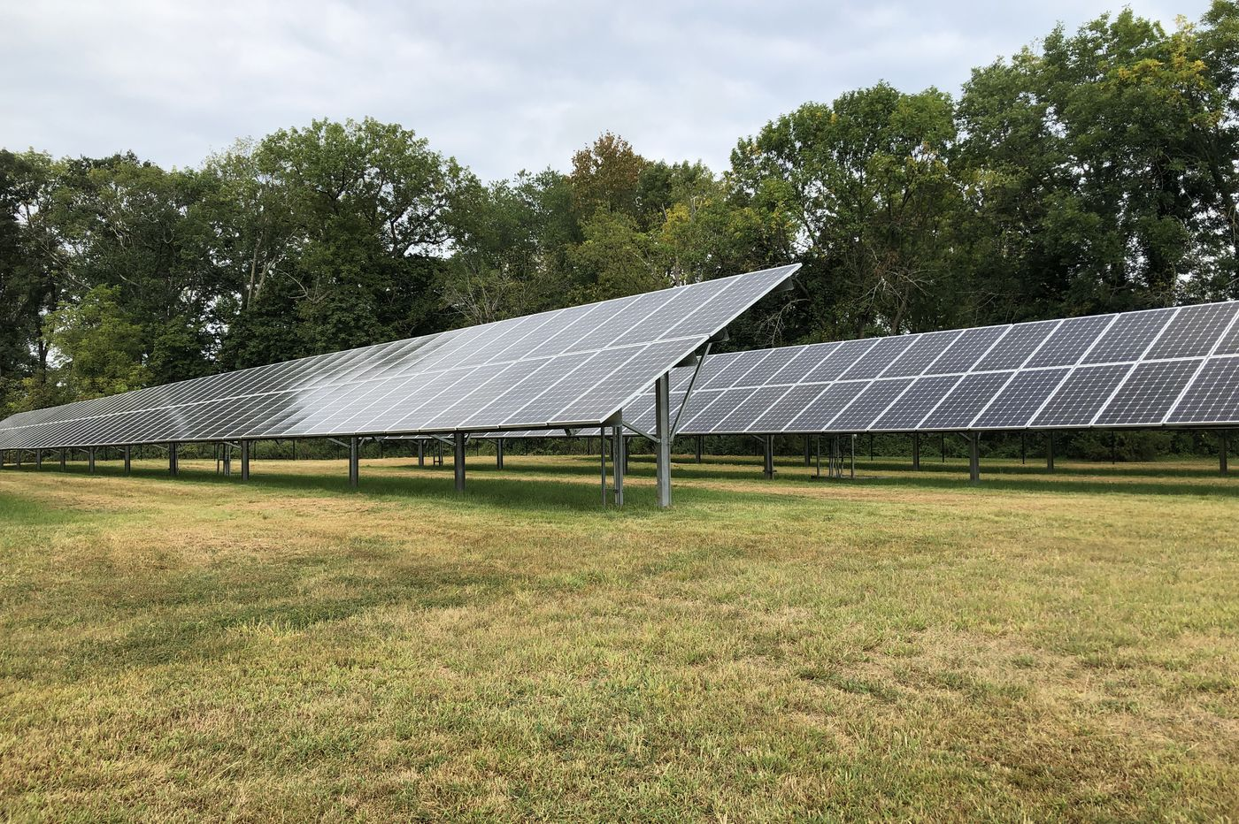Wawa's Going Solar as It  Brings Solar Power to 93 of Its Stores in New Jersey