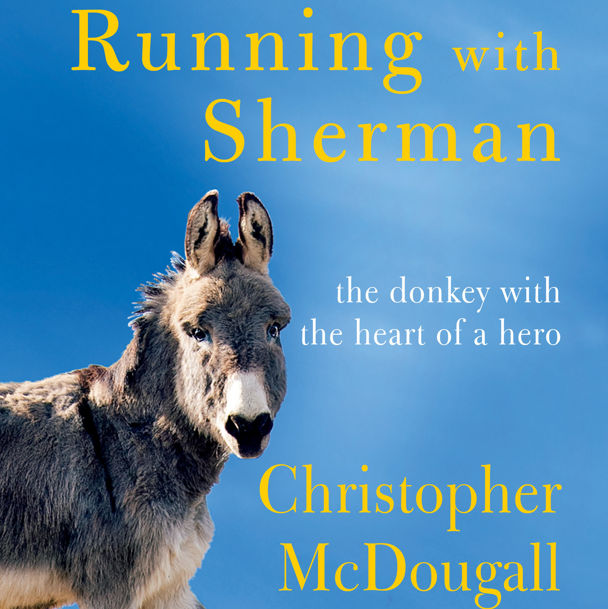'Born to Run' Author, Drexel Hill Native Chris McDougall Has a New Book Out