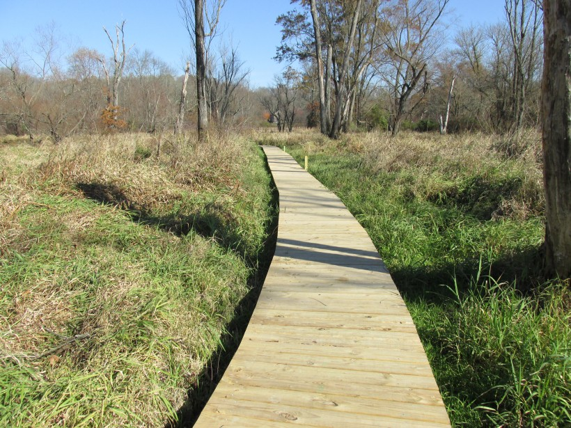 Brandywine Conservancy Receives $80,000 Grant for Brandywine Creek Greenway