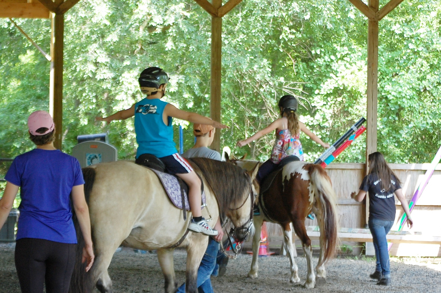 All Riders Up in Garnet Valley Offers Horseback Riding as Therapy for Those Suffering Trauma