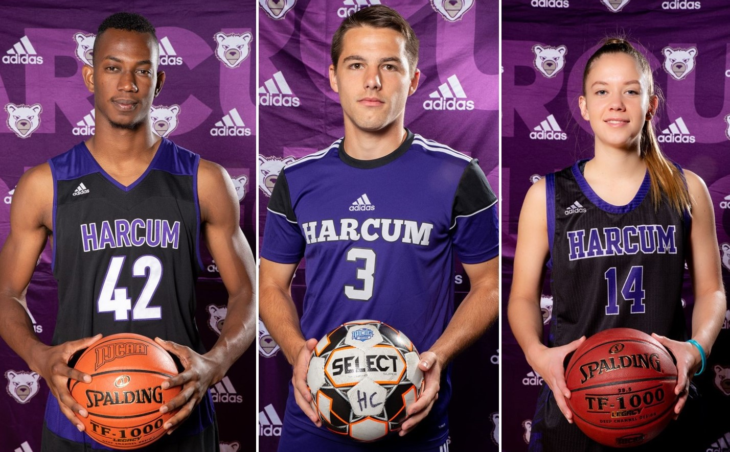 Record Number of Harcum College Student-Athletes Honored Nationally for Their Stellar GPAs