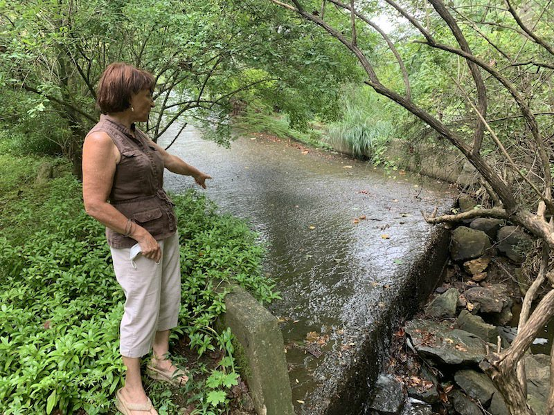 DEP-Ordered Dam Breach Will Eliminate Earle's Lake in Newtown Square