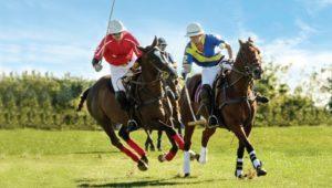 Malvern Bank polo match